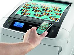 Купить Цветной принтер OKI А3 формата