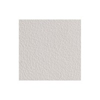 Бумага Granite Embossed White 300 gsm SRA3 [450L80009]